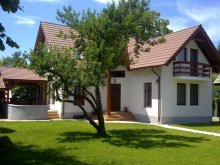 Chalet Bacău, Dancs House