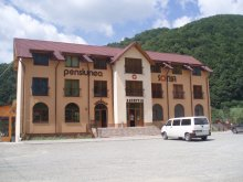 Accommodation Ciceu-Poieni, Sonia Guesthouse