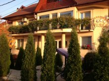 Accommodation Rogoz de Beliu, Perla B&B