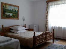 Accommodation Pustoaia, Cristal Guesthouse