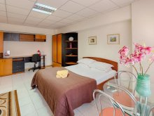 Accommodation Cioranca, Studio Victoriei Square Apartment