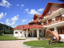 Accommodation Valea Mare-Bratia, Pappacabana Guesthouse