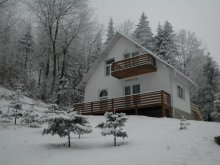 Accommodation Dorohoi, Cristal Vila B2