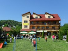 Accommodation Tisău, Raza de Soare Guesthouse