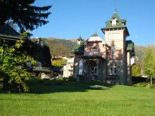 Villa Dealu Viilor (Moșoaia), Domina Vila