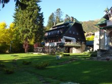 Accommodation Sinaia, Draga Vila