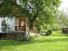 Vacation home Frasin-Deal, Cabana Rustică Chalet