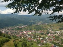 Bed & breakfast Hulubești, Tourist Welcome Guesthouse