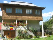 Bed & breakfast Poieni (Vidra), Sofia Guesthouse