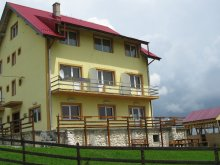Bed & breakfast Hulubești, Pui de Urs Guesthouse
