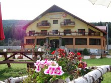 Bed & breakfast Valea Sibiciului, White Horse Guesthouse