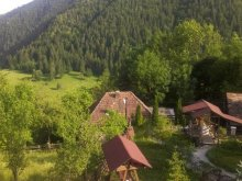 Bed & breakfast Teiu, Valea Moriin Guesthouse