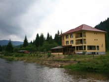 Accommodation Hoancă (Vidra), Alex Guesthouse