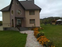 Accommodation Sebeș, Luca Benga House
