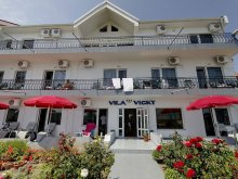 Accommodation Izvoru Mare, Vicky Vila