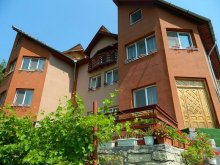 Accommodation Slobozia, Casa Lorena Guesthouse