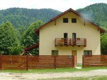 Accommodation Pădureni (Berești-Bistrița), Carmen Vila