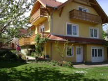 Accommodation Somogy county, FO 1028 Apartment
