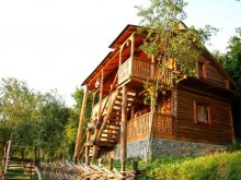 Accommodation Cavnic, La Gorgan Guesthouse