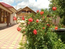 Bed & breakfast Spiru Haret, Speranța Vila