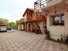 Bed & breakfast Constantin Daicoviciu, Diana Guesthouse