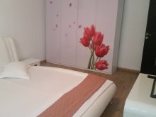 Accommodation Lilieci, Luxury Apartment