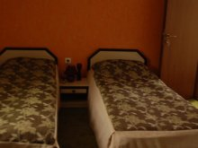 Accommodation Gorgan, Casa Sibianului Guesthouse