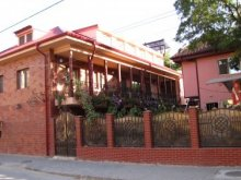 Bed & breakfast Tulcea, Pluto Guesthouse