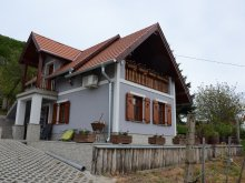 Accommodation Nemesgulács, Angelhouse Vacation home
