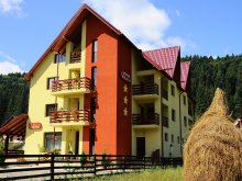 Accommodation Dealu Crucii, Valeria Guesthouse