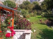 Accommodation Vidolm, Anci Guesthouse