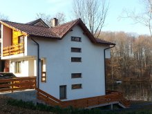 Accommodation Agrieș, Gutin Lakefront Cottage