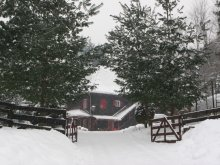 Accommodation Sibiu county, Basmelor Chalet
