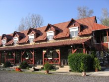 Bed & breakfast Vilyvitány, Hernád-Party Guesthouse and Camping