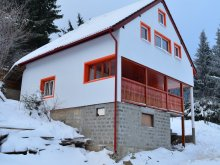 Vilă Dalnic, Orange House
