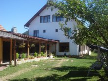 Bed & breakfast Comăna de Sus, Adela Guesthouse