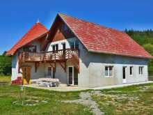 Bed & breakfast Băile Homorod, Sánduly Chalet