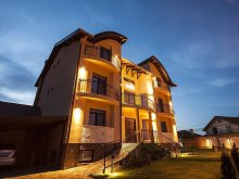 Accommodation Tarcea, Konfort Guesthouse