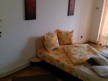 Apartament Lunca (C.A. Rosetti), Darry's Apartment