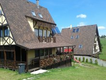 Accommodation Dealu Mare, Vals Vila