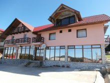 Bed & breakfast Zece Hotare, Brădet Guesthouse
