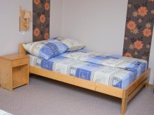 Accommodation Dealu Mare, Eszter Apartment