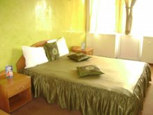 Bed & breakfast Cavnic, Casa Rosa