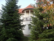 Bed & breakfast Balatonlelle, Andrea Guesthouse