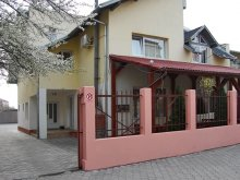 Bed & breakfast Bârzava, Next Guesthouse