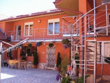 Accommodation Ticvaniu Mare, Maria Guesthouse