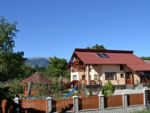 Bed & breakfast Cotmeana (Stolnici), Arnota Guesthouse