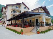 Accommodation Gornea, Noblesse Guesthouse